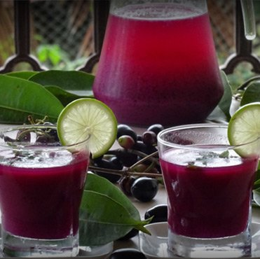 Jamun & Pomegranate Refresher